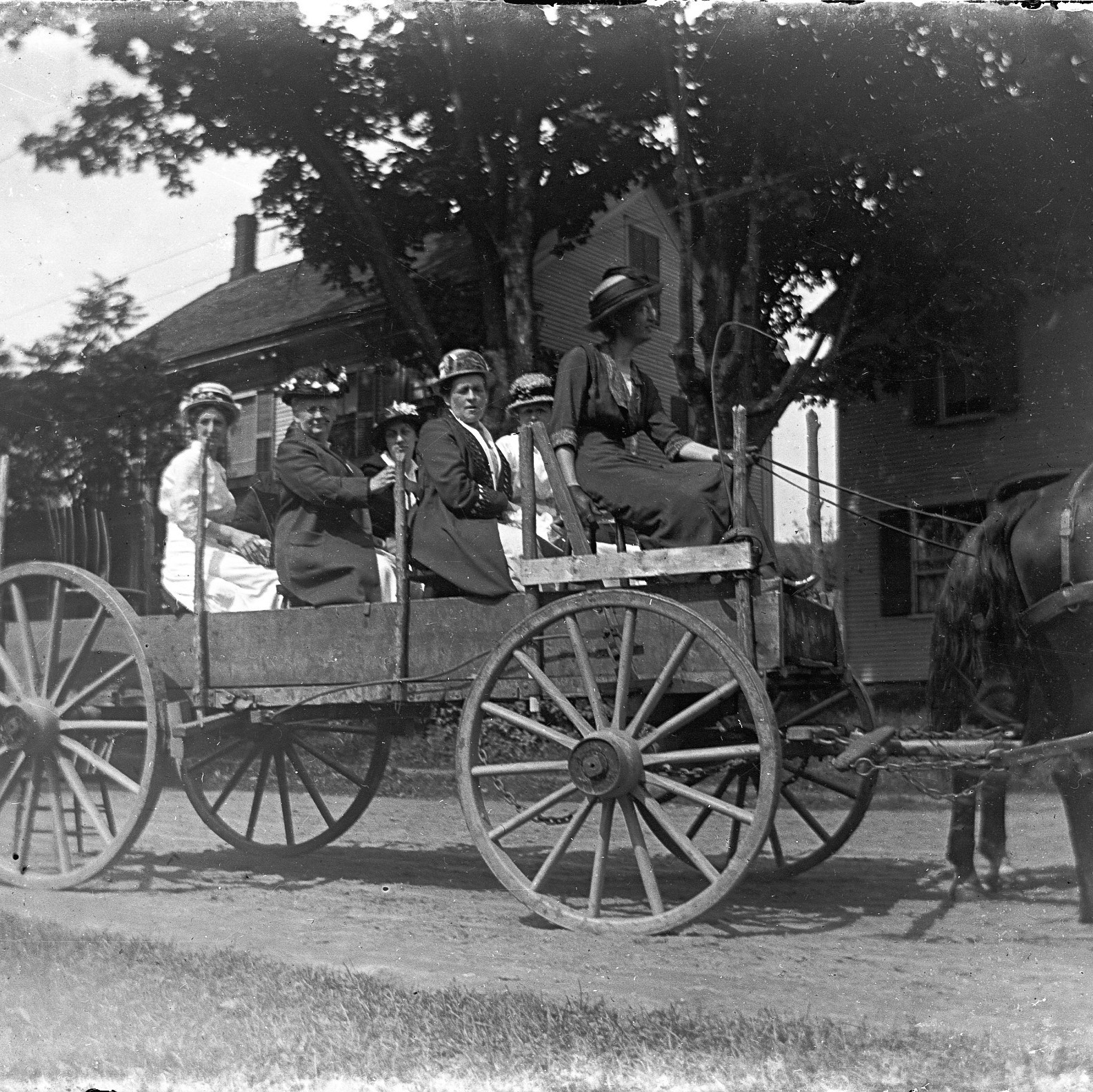 Photograph of family in a wagon by George Swallow